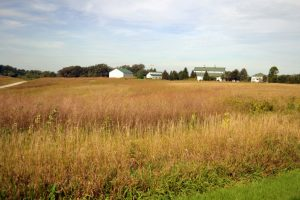 View of the Wobeter Farm with CRP acres (photo credit NRCS)