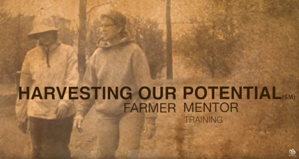 Introduction Video - This video introduces the Harvesting our Potential Program.