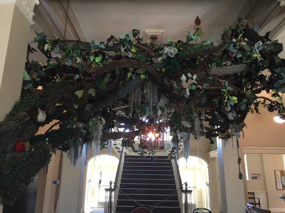 Oatland's Mighty Oak: a fiber Art Installation in the lobby of the Welcome Center at Oatland Island Wildlife Center