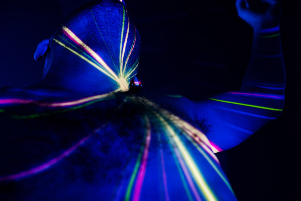 Daniel Regan Threshold projector light.jpg