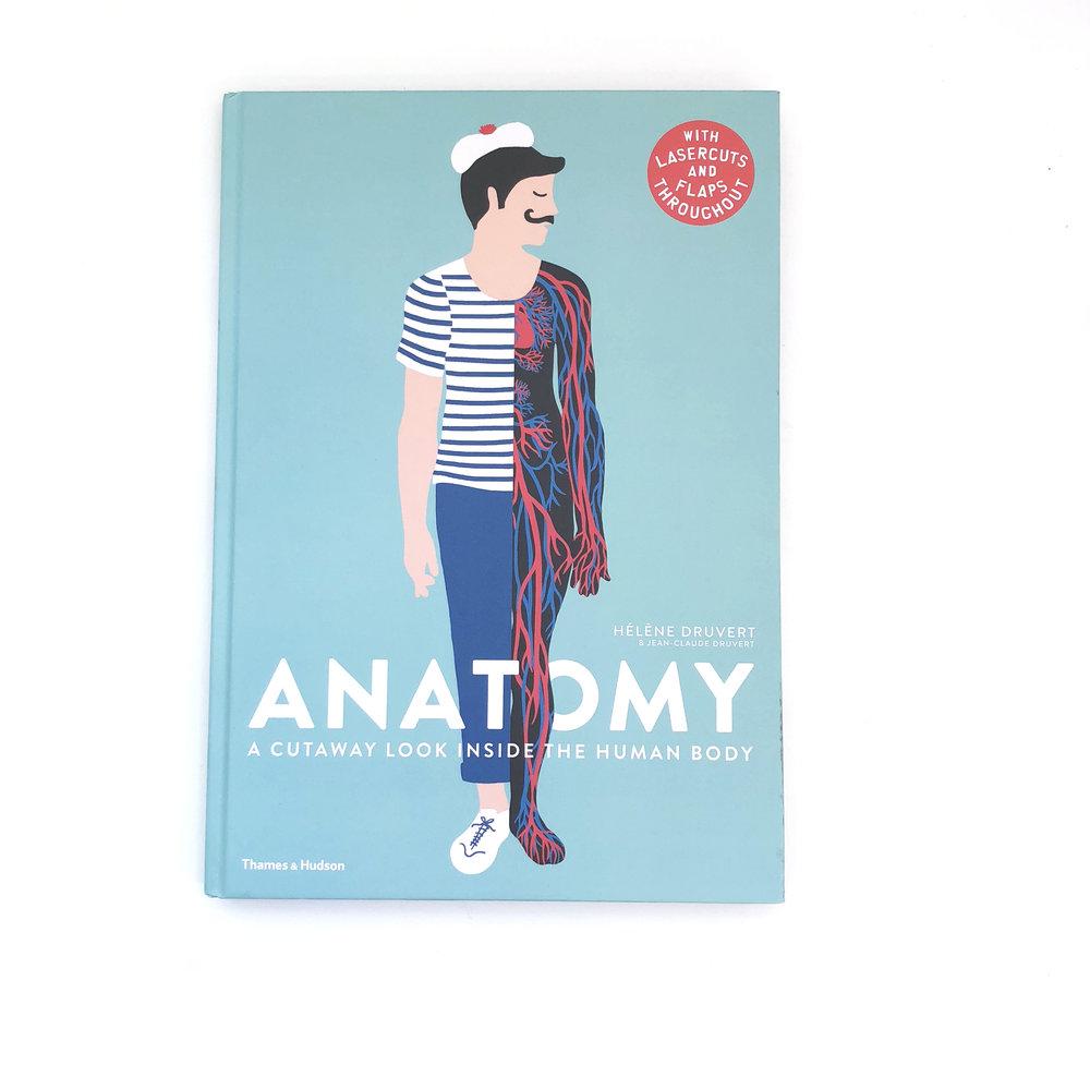 Anatomy: A Cutaway Look Inside the Human Body + 6 more Body