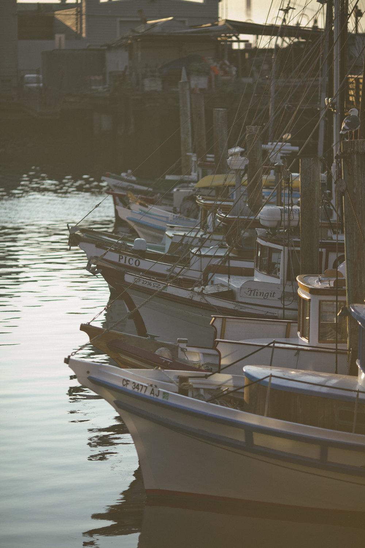 Fishermans Wharf 3.jpg