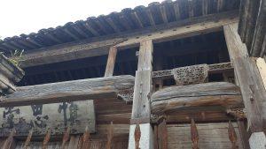 Bloggbild56.jpg