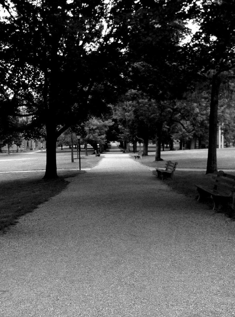 Pathway-2.jpg