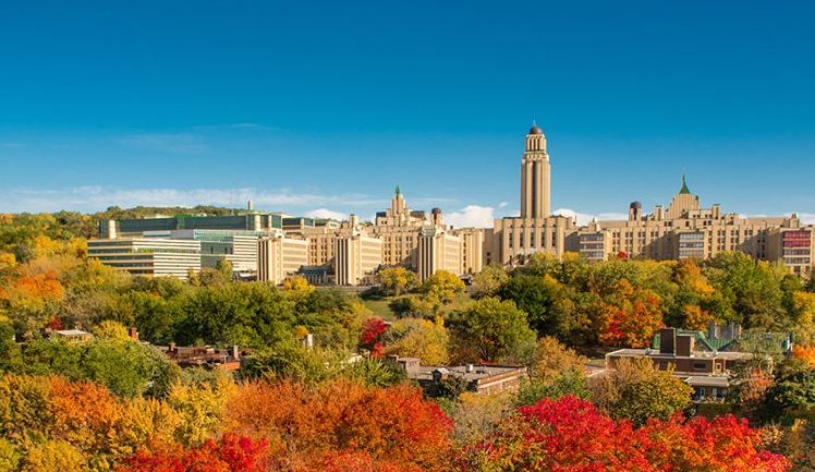 University of Montreal campus in the fall foliage.