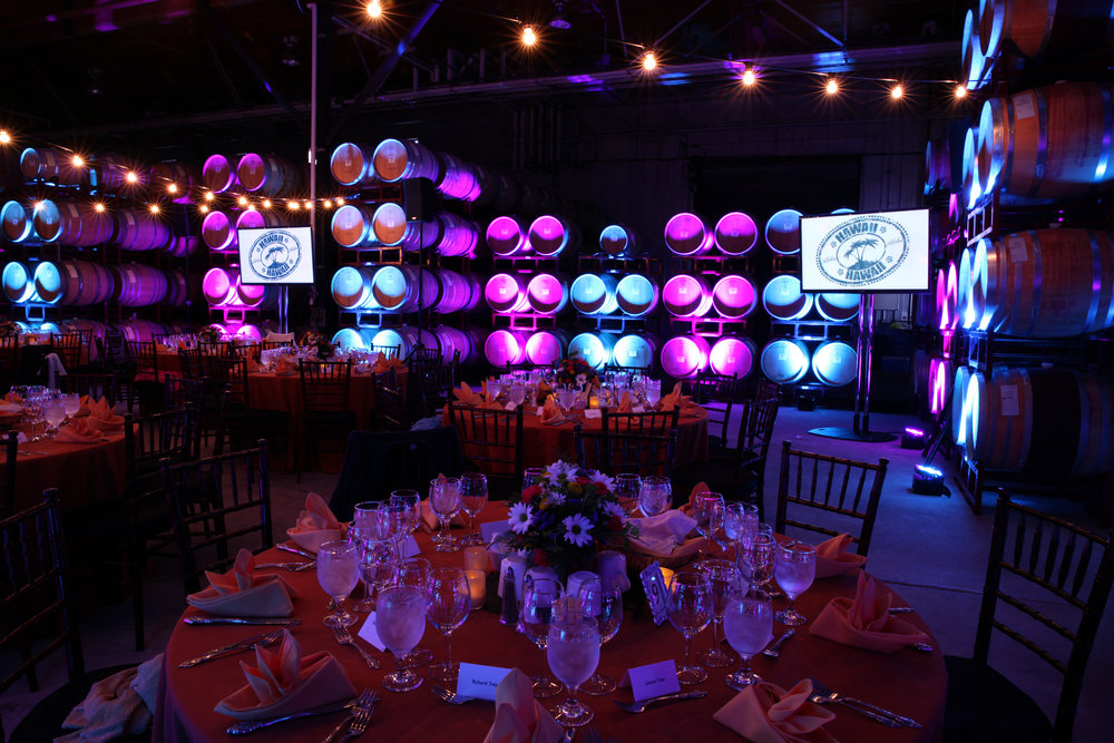 Monitors & Uplights - Black_Stallion_Montessori_Gala.JPG