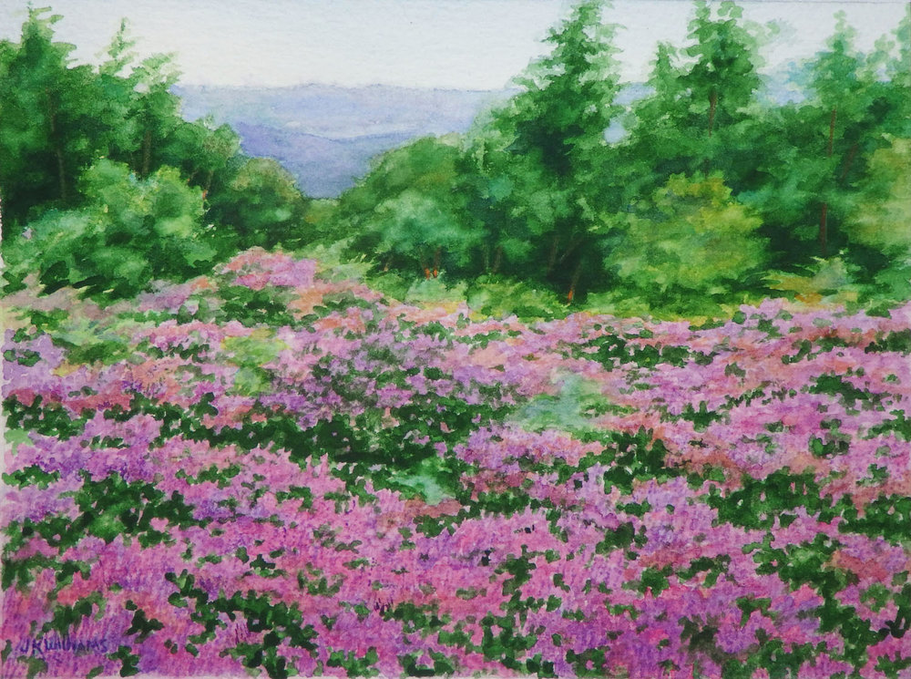 """Heather Field""   Watercolor  6"" x 8"""