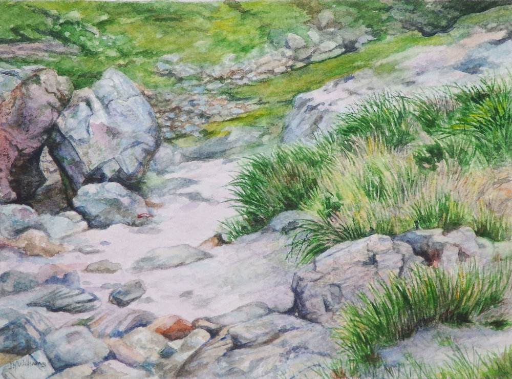 """Near a Sutherland Beach""   Watercolor  6"" x 8"""