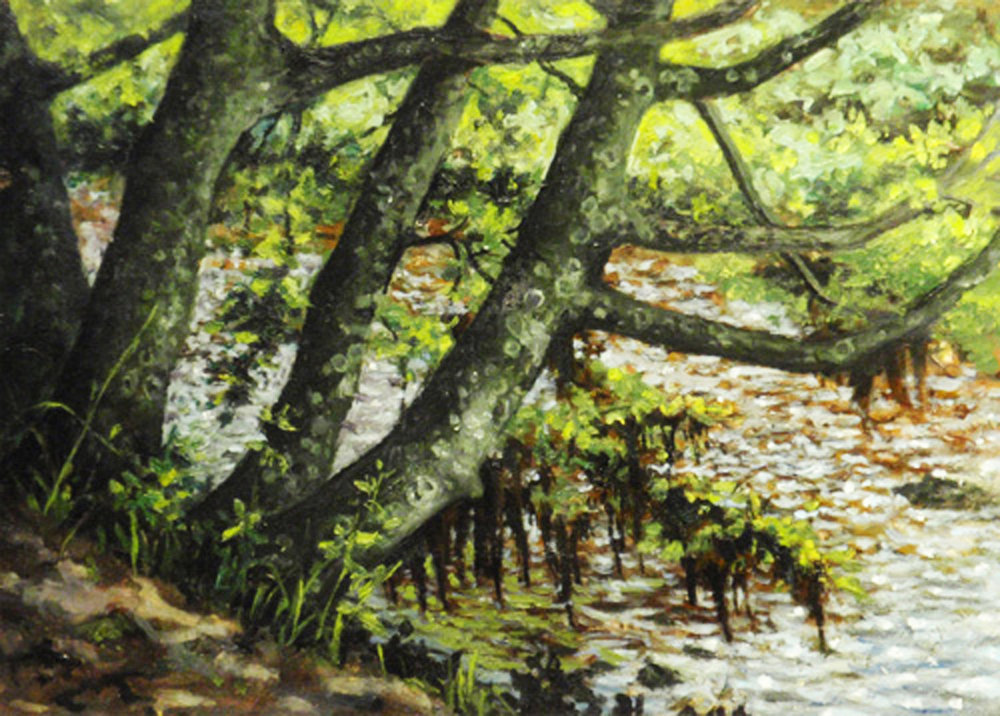 """""""Trees By the Falls, River Ness"""" Oil 5"""" x 7"""""""
