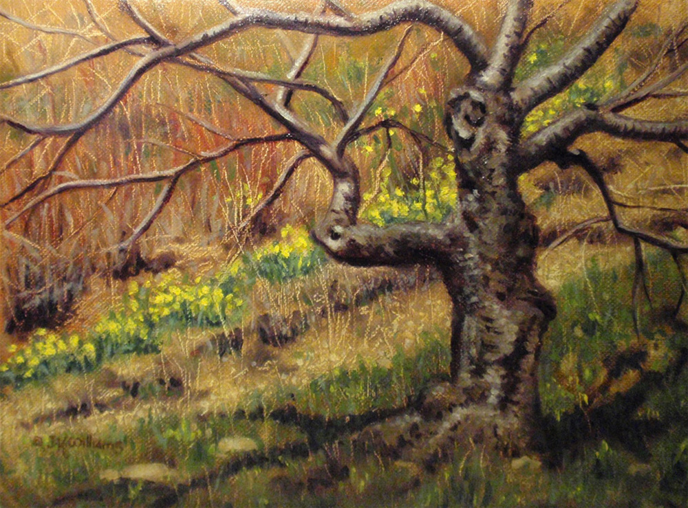 """""""Daffodils and Japanese Cherry Tree""""  Oil 6""""x 8"""""""