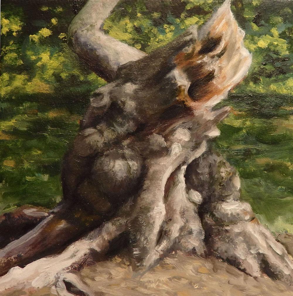 """Crabapple Stump"" sketch  Oil 4 ""x 4"""