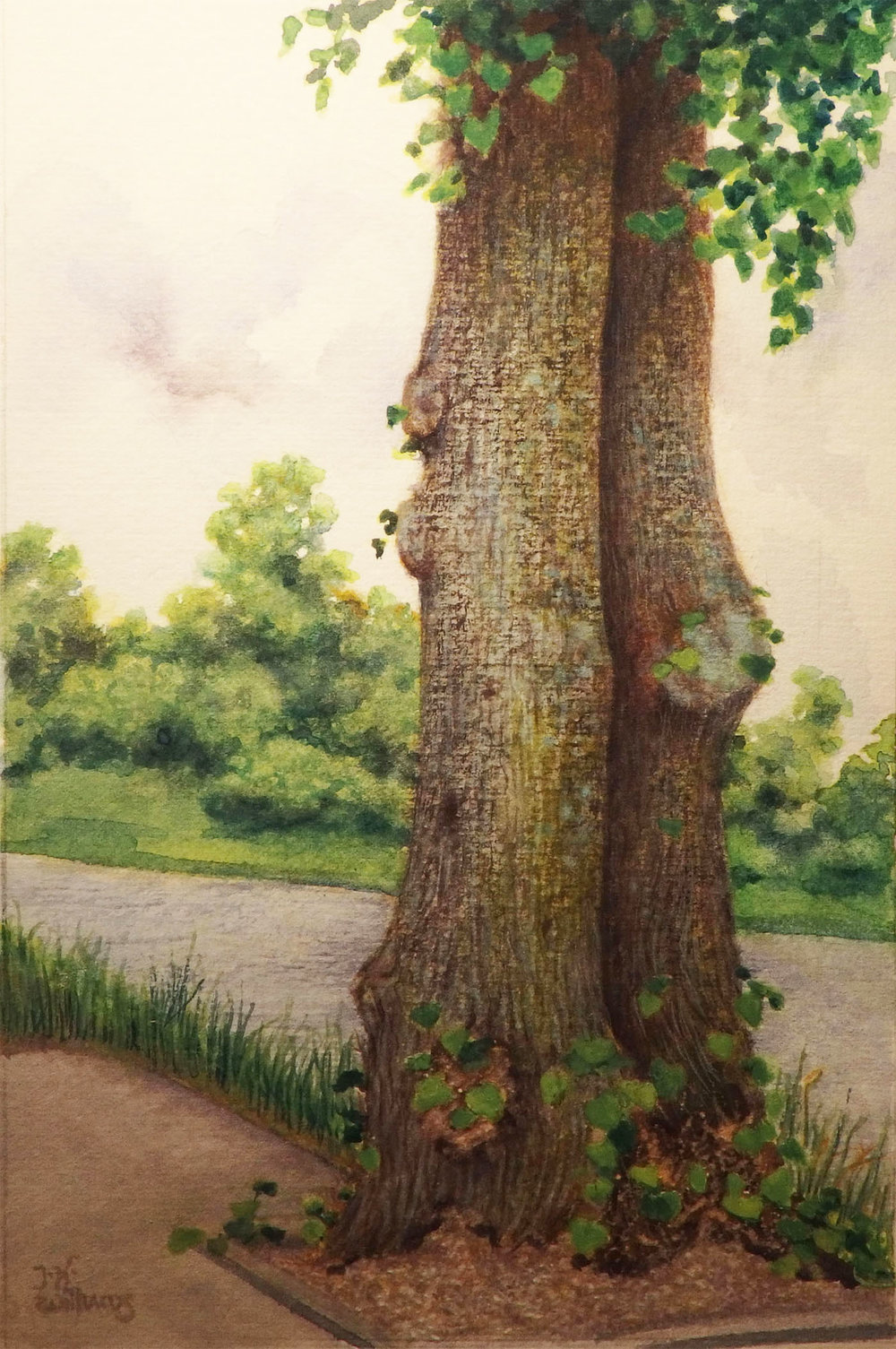 """""""Beside the River Ness"""" Watercolor      x"""