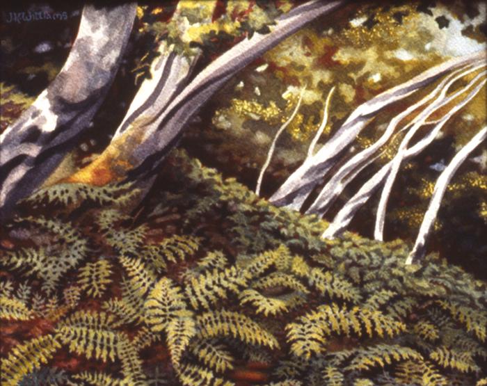 """Eucalyptus and Bracken"" Watercolor 8"" x 10"""