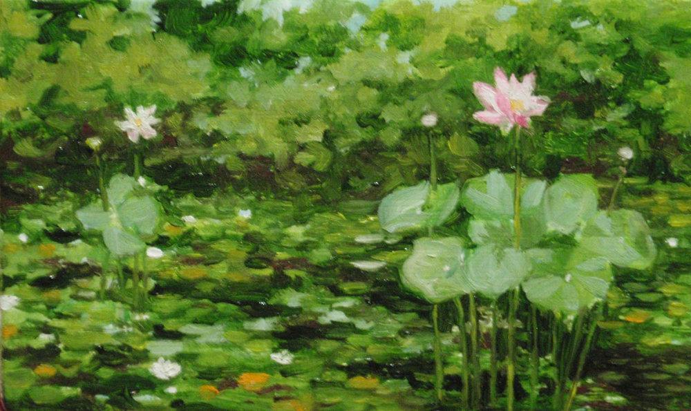 """Lotus Pond""  Oil sketch 3 1/8"" x 5 1/16"""
