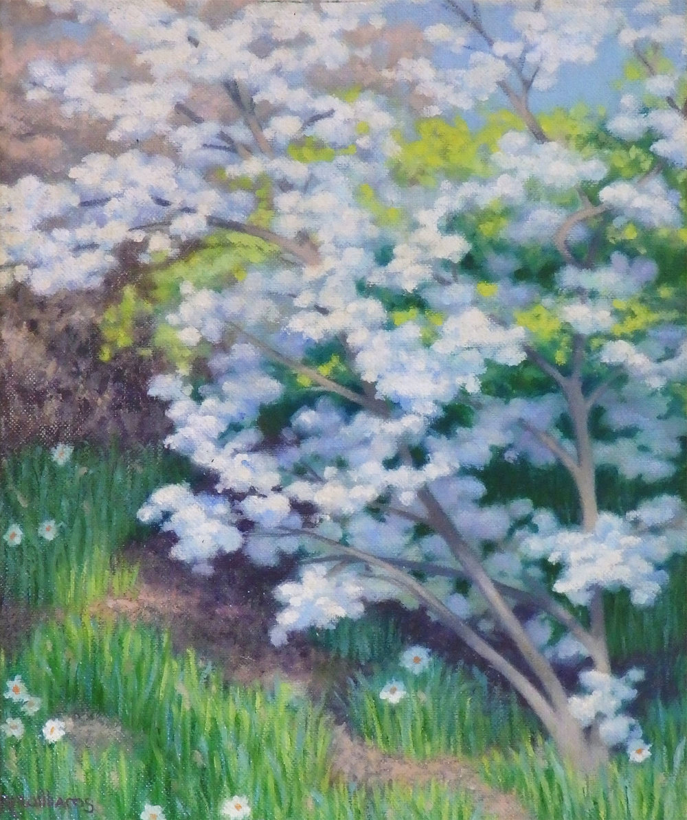 """""""Blossoms on Plaza Street""""    Oil 10""""x 8"""""""