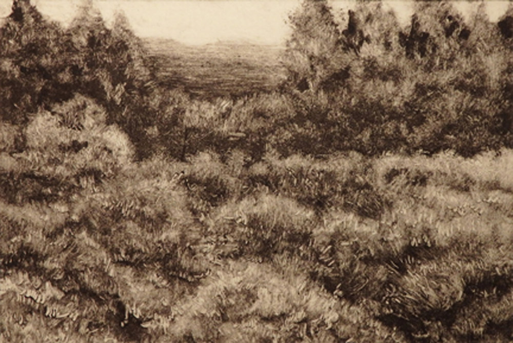 """Highland Heather""   Monotype  4"" x 5 7/8"""
