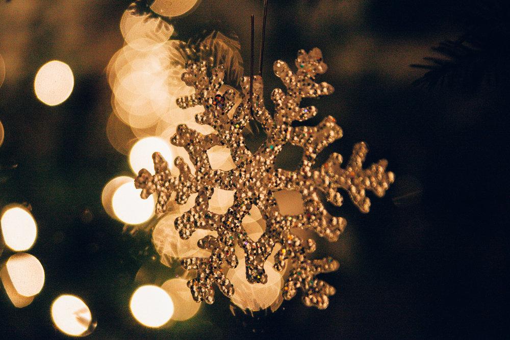 A Commons Christmas - Cameron May Photography-7.jpg