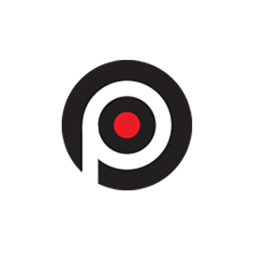NDwebsiteLogos_thepurposeinstitute.png
