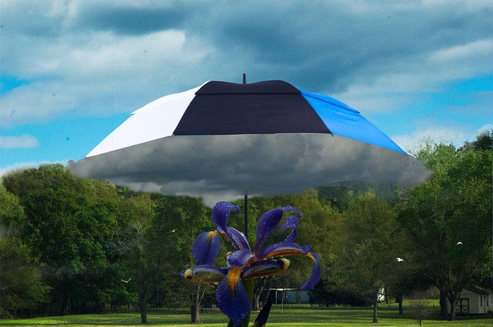 rain cloud montage