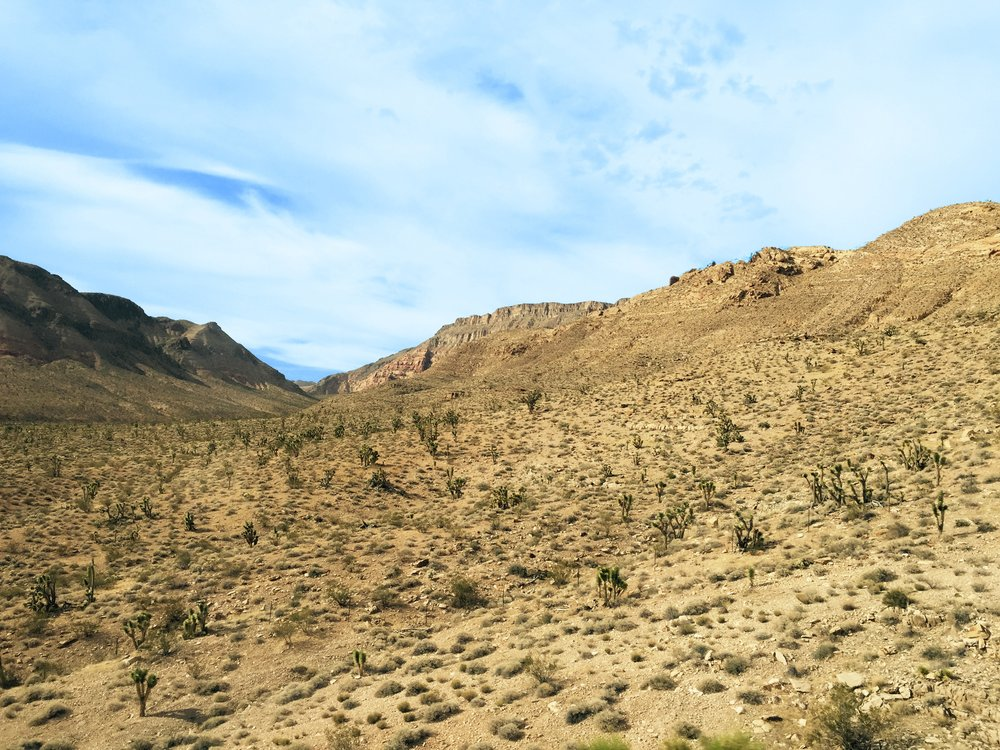 Mojave Trails National Monument -