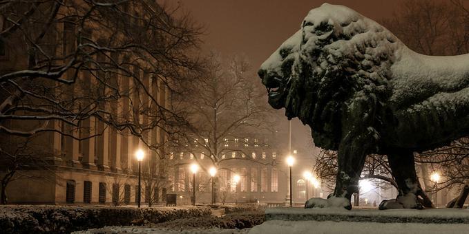 lion snow.jpg