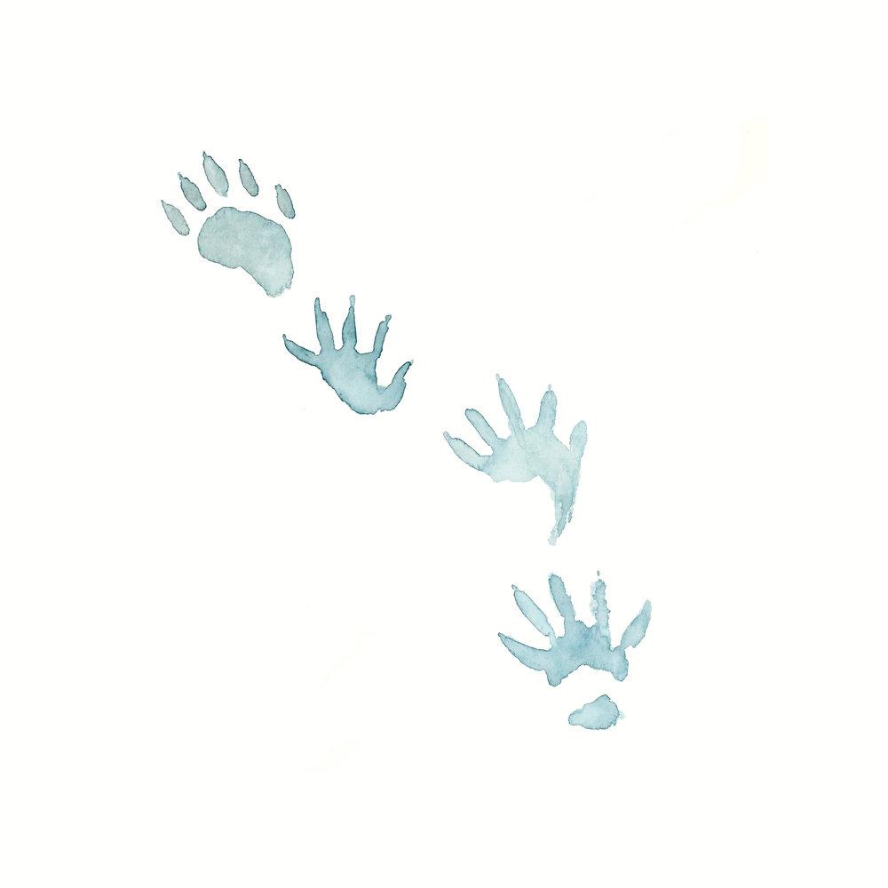 animalprints001.jpg