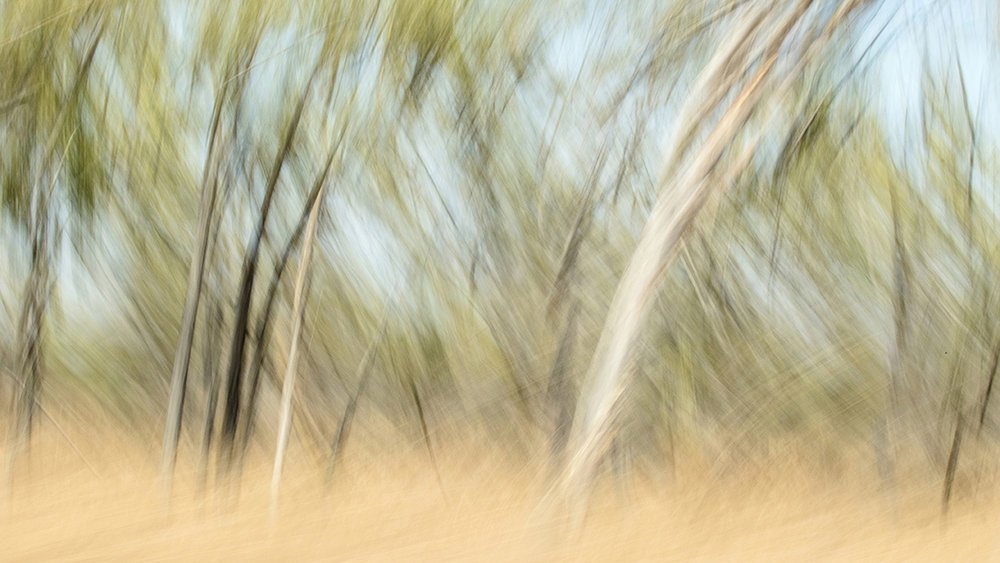Outback I