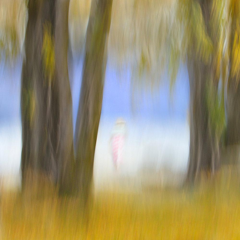 Autumn Wander