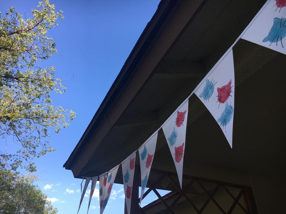 kitten-pennant-banner-Redlands-Foster-Cats.jpg