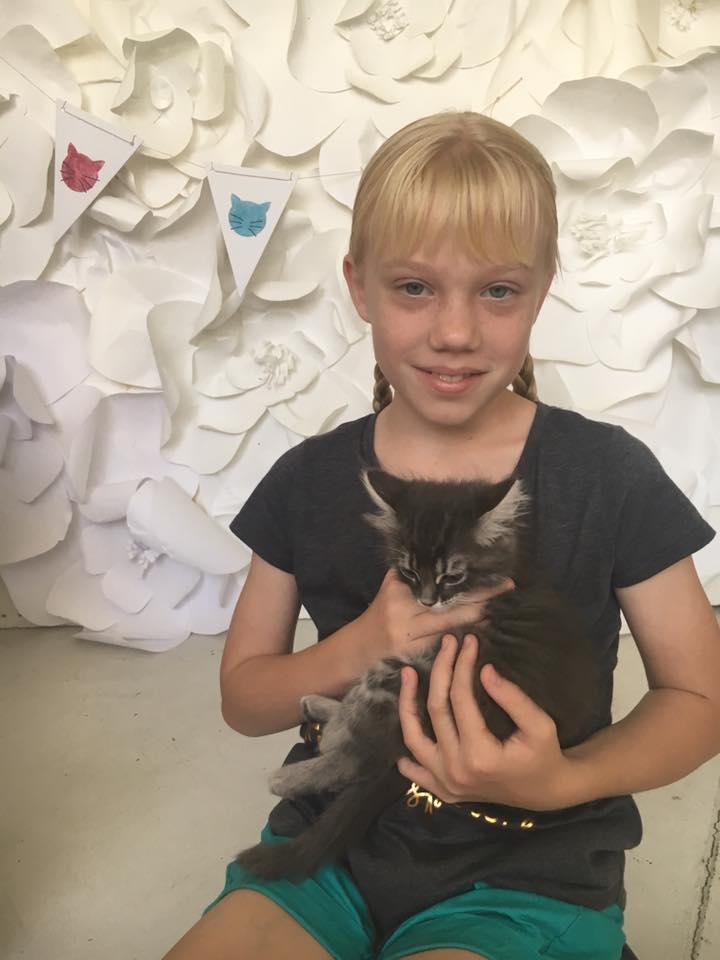 young-girl-holding-kitten-redlands-foster-cats-kitten-party.jpg