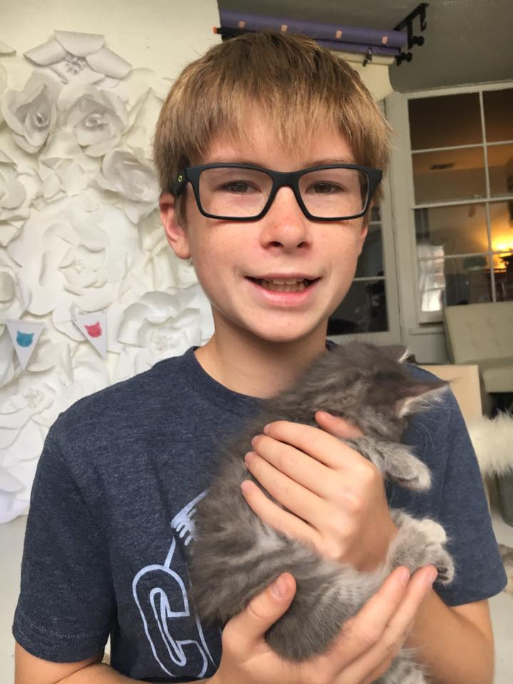 young-boy-holding-kitten-party-Redlands-Foster-Cats.jpg