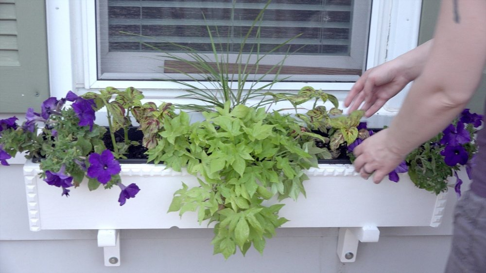 how-to-make-planter-15.jpg