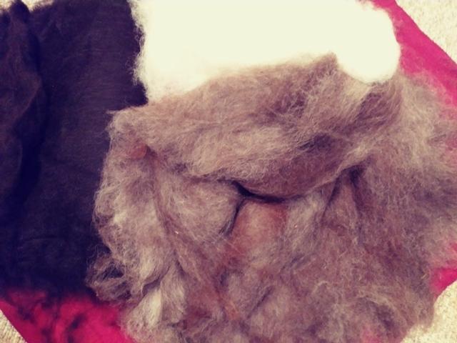 Alpaca Batting