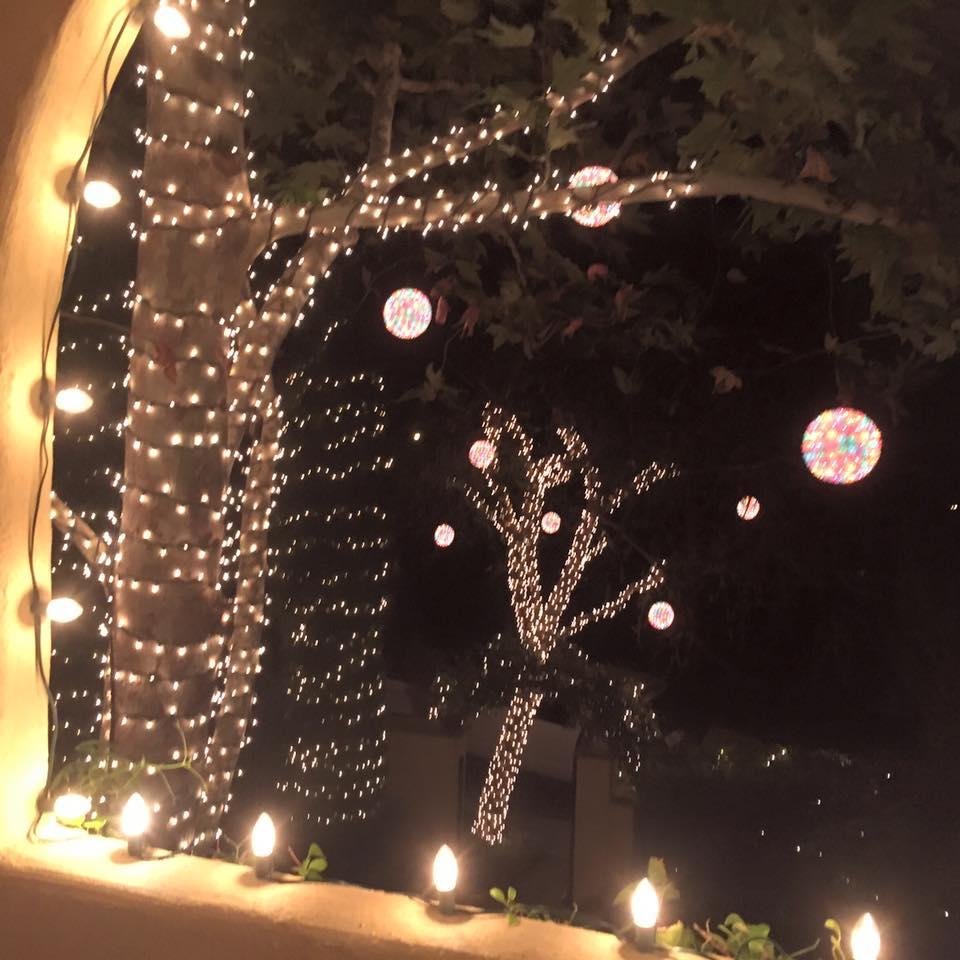 Tree Lighting.jpg