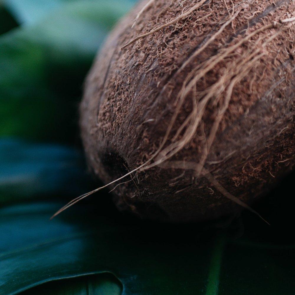 no plastic! - Wir lieben unsere Umwelt und wollen sie schützen anstatt zu verschmutzen! Darum verwenden wir, wo immer es geht, plastikfreie und umweltschonende Alternativen. Auch die Kokosnuss selbst wird von uns so nachhaltig wie möglich genutzt. Unser Ziel ist es, alle Bestandteile zu benutzen und aus ihnen zeitlose, umweltfreundliche Einzelstücke zu erschaffen. So werden bei uns aus Kokosnuss-Schalen einzigartige Leuchten, die jedes Zuhause verschönern, ohne der Umwelt zu schaden.