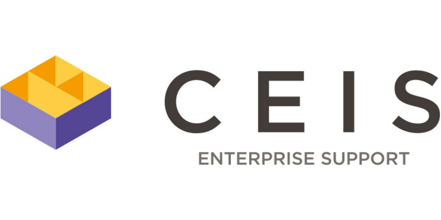 CEIS Enterprise Support