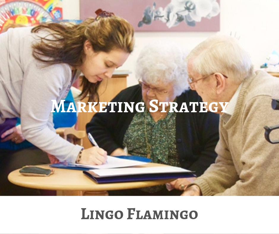 Lingo Flamingo Marketing Strategy CEIS