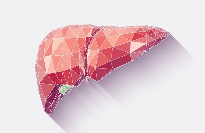 Анализ на гепатит B