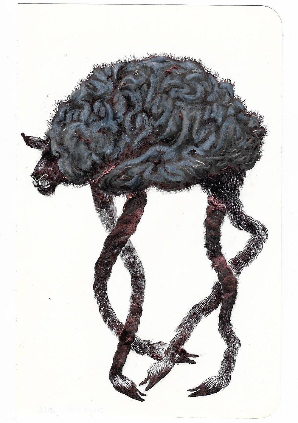 SheepBrains-2.jpg