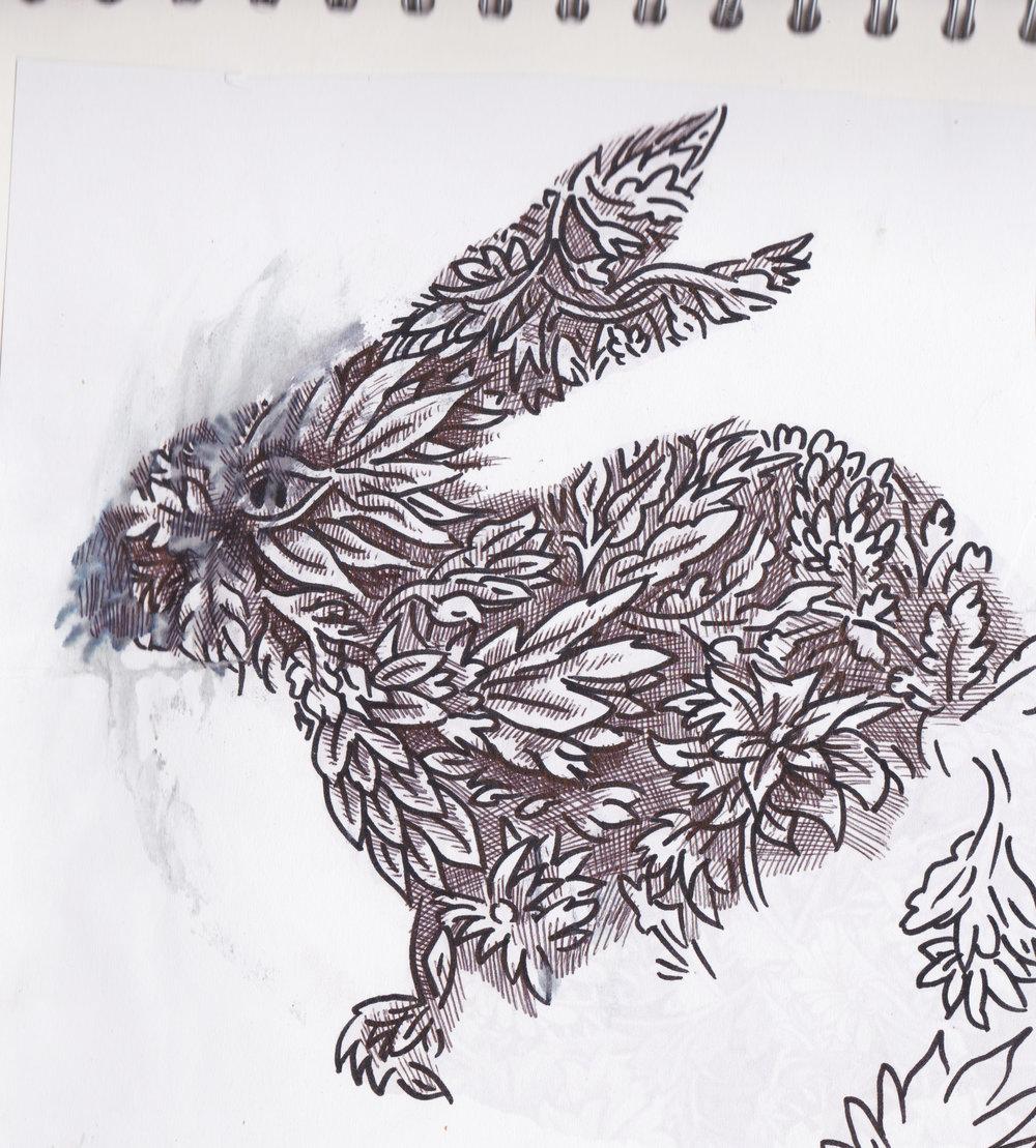 bunny bunny rabbit 3.jpg