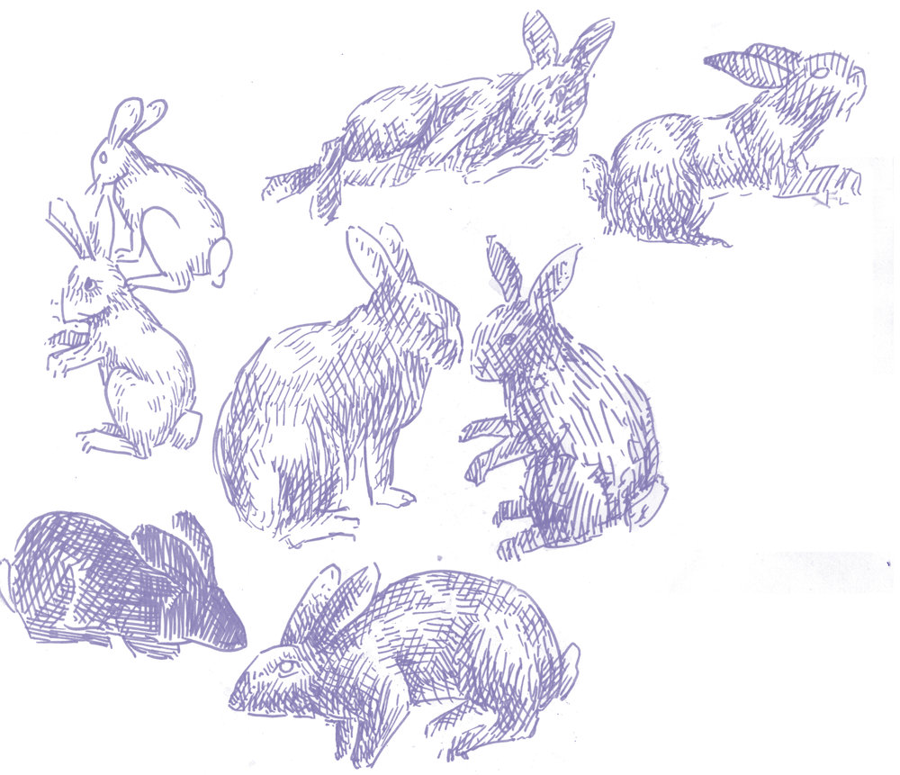 bunny bunny rabbits 4.jpg