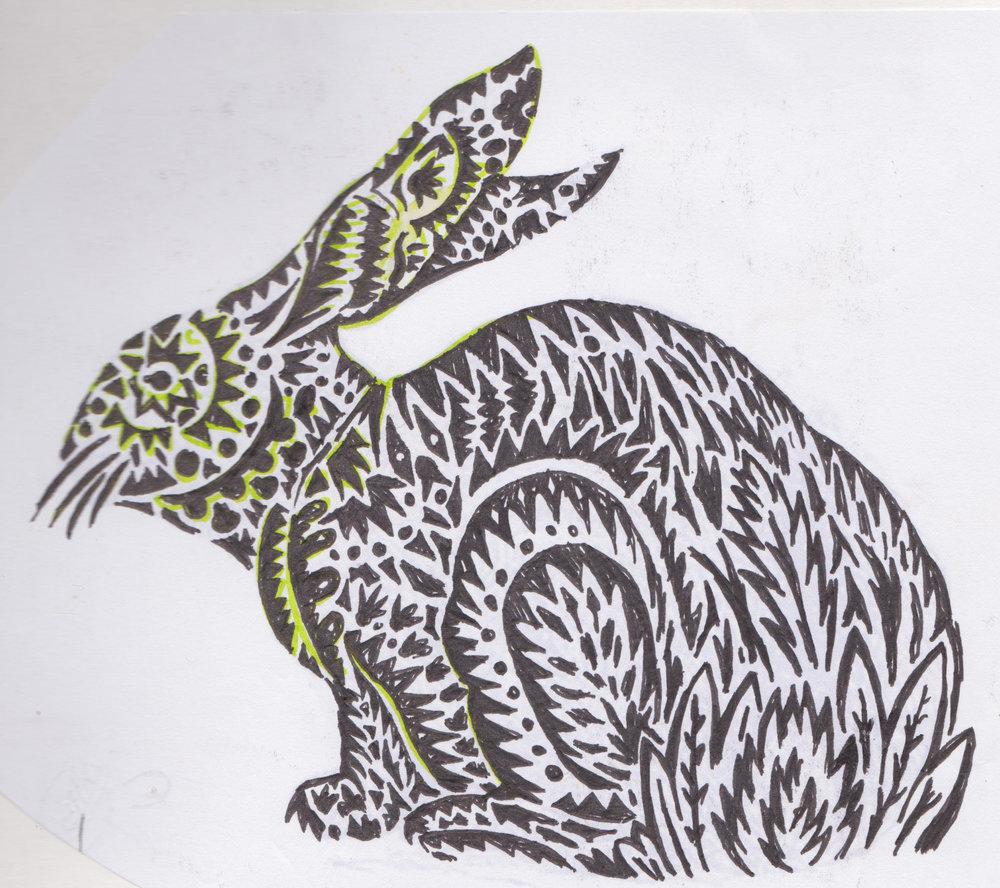 bunny bunny rabbit 1.jpg