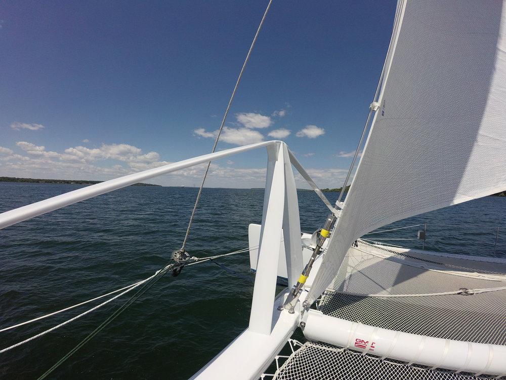 Carbon Catamaran_PelicanStriker_Martingale.jpg