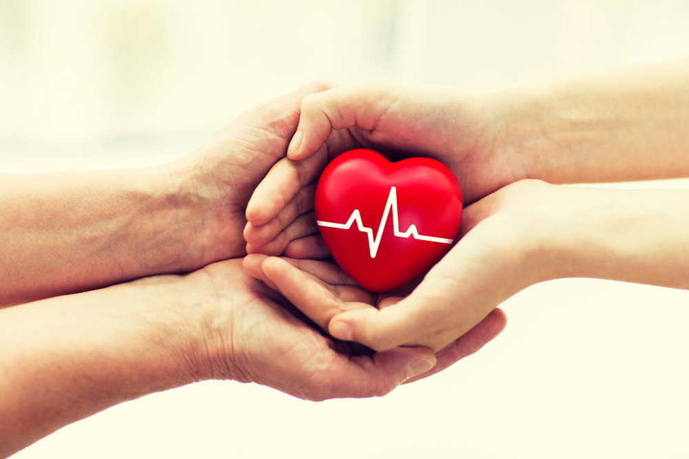 bigstock-charity-health-care-donation-146195813-1024x683.jpg
