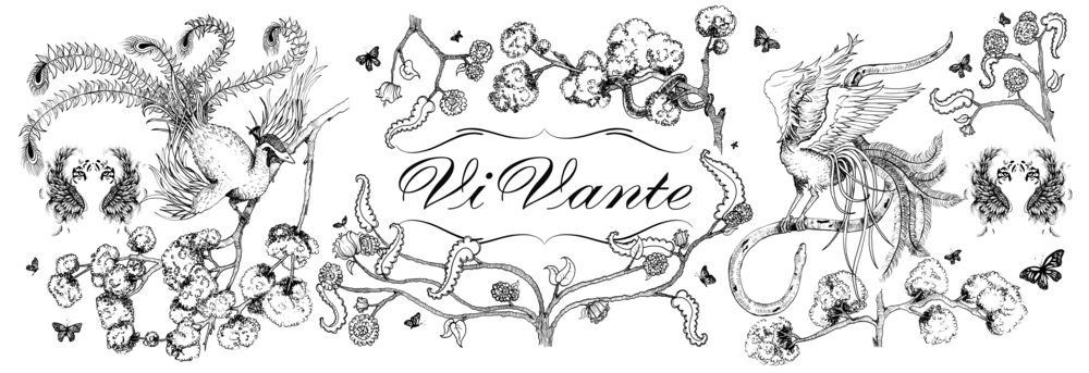 WEB Black with transparent background.png