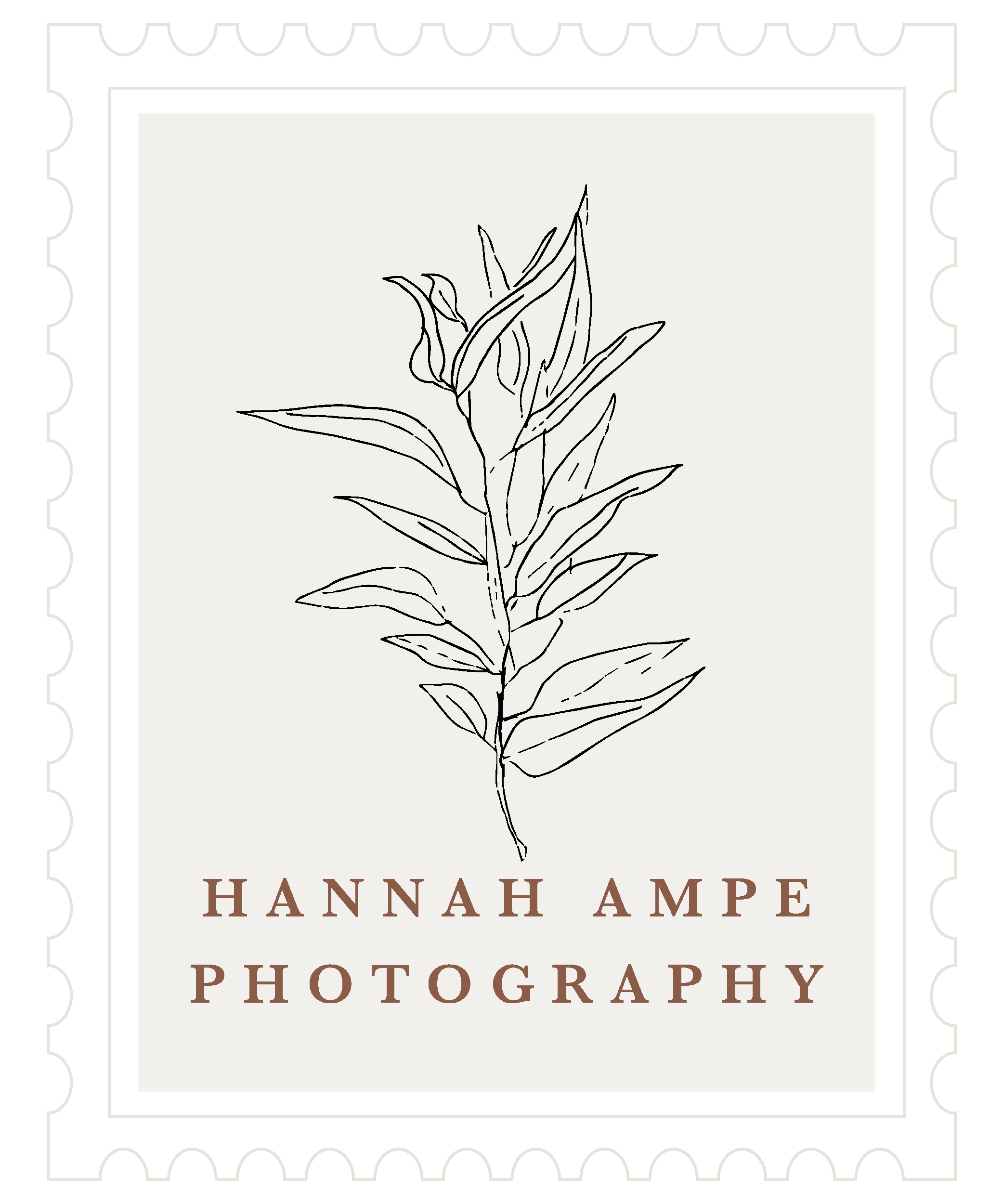 hannah ampe photography
