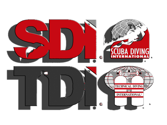 - SDI Course Director     SDI Sidemount Instructor     SDI Nitrox Instructor     SDI Wreck Instructor     SDI Solo Diving Instructor CPROX 1st AED AdministratorTDI Intro To Tech InstructorTDI Technical Sidemount InstructorTDI Advanced Nitrox InstructorTDI Decompression Procedures InstructorTDI Cavern InstructorTDI Intro to Cave InstructorTDI Full Cave InstructorTDI Advanced Wreck InstructorTDI Gas Blender InstructorTDI Advanced Gas Blender Instructor