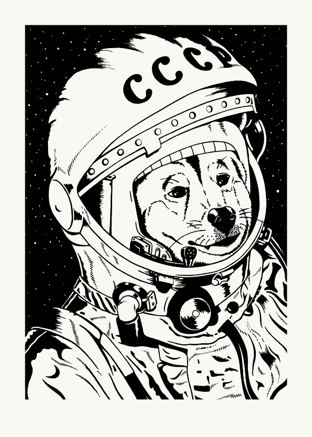 spacedog.jpg