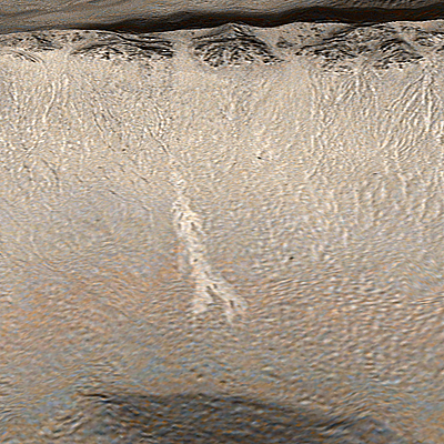 Present Day Water Flows on Mars