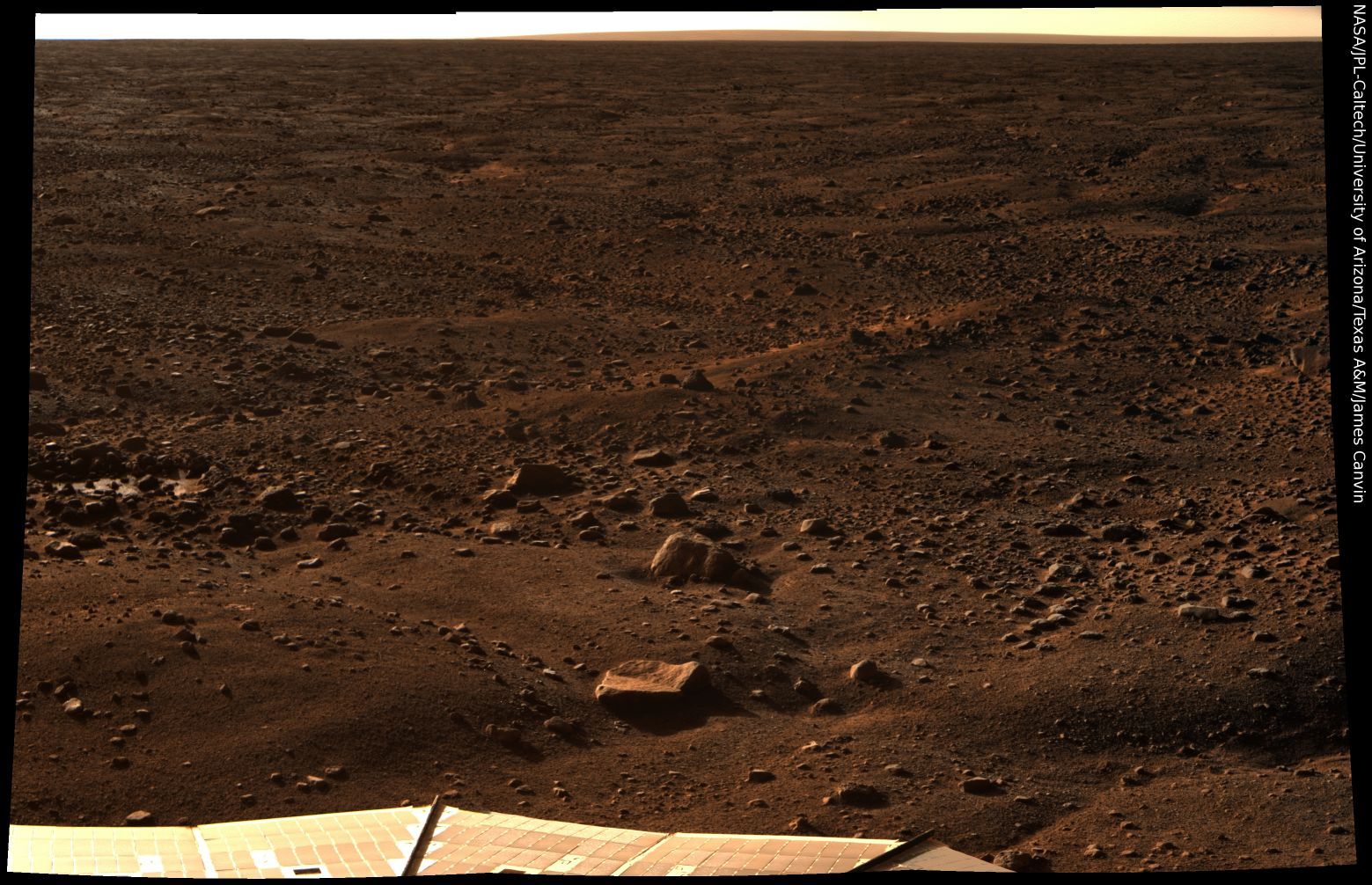 Phoenix Color Image of the Martian Surface at the Pole